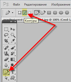 Как сделать контуры изображения в фотошопе