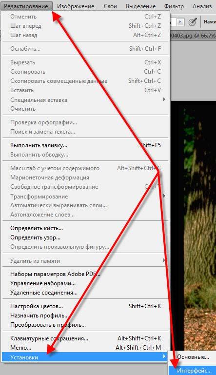 Редактирование - Установки - Интерфейс