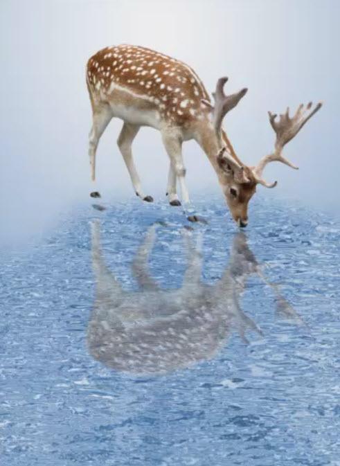 отражение сделать воде фото в