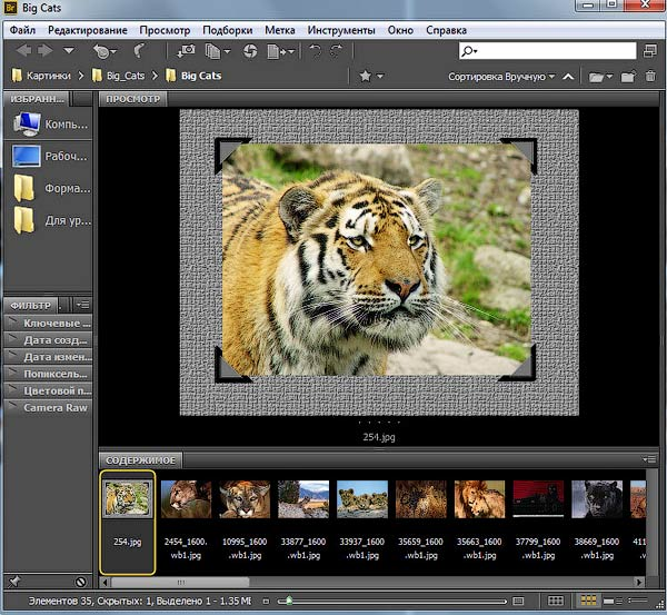 Adobe Bridge что это - фото 4